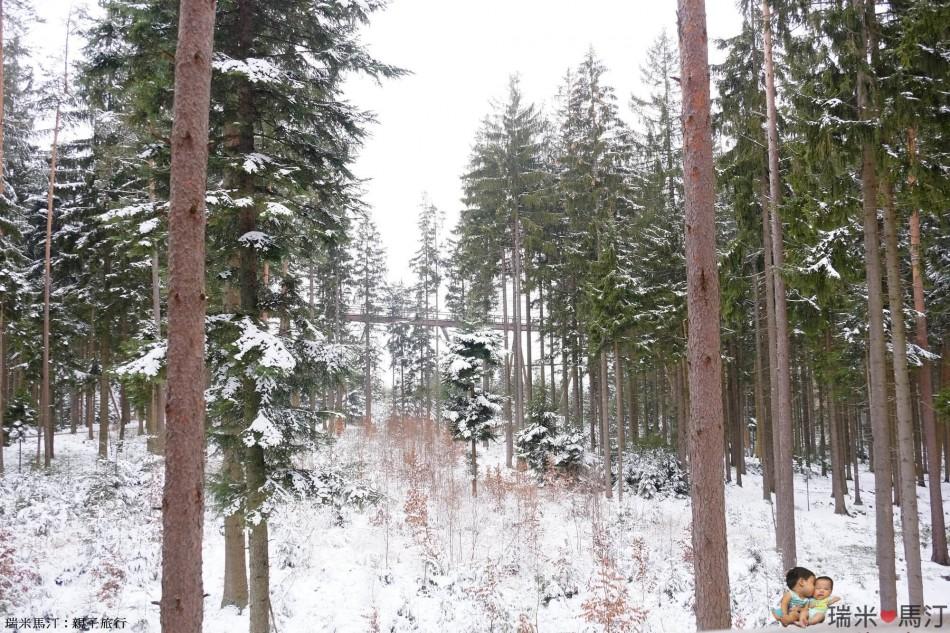 Lipno Treetop Walkway