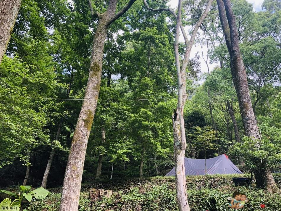 埔里聽瀑森林營地