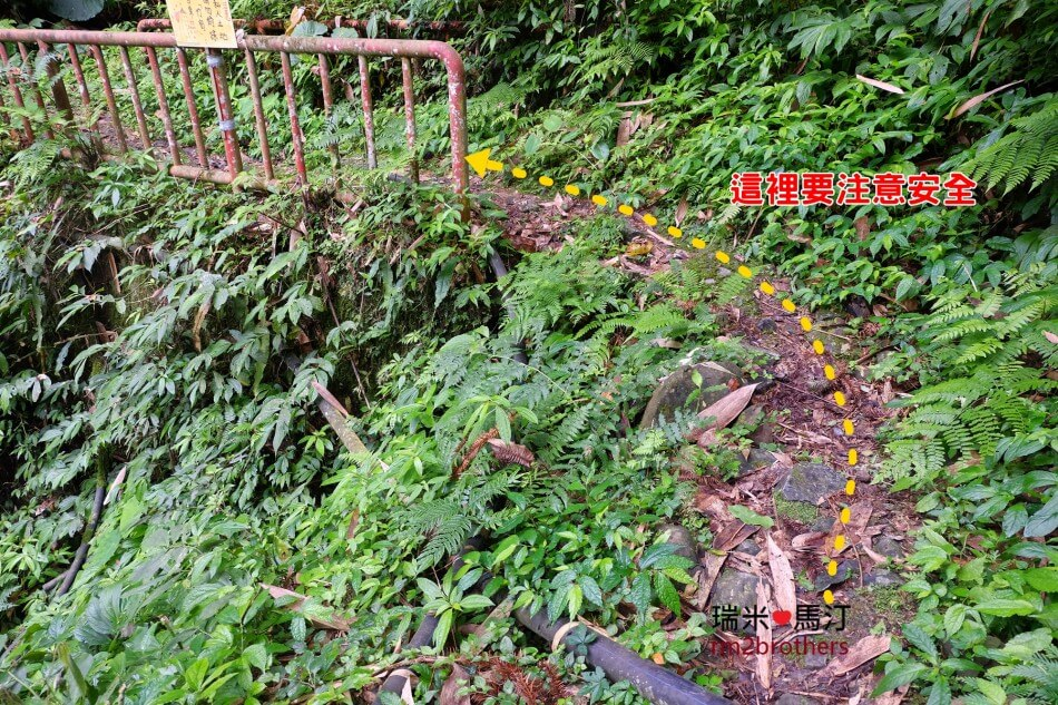 新竹五峰花園營地